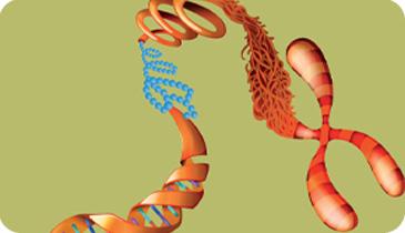 Epigenetics Research