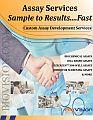Assay Services Brochure