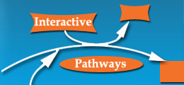 Interactive Pathways