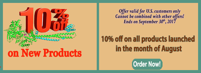 AugustNewProduct10Off