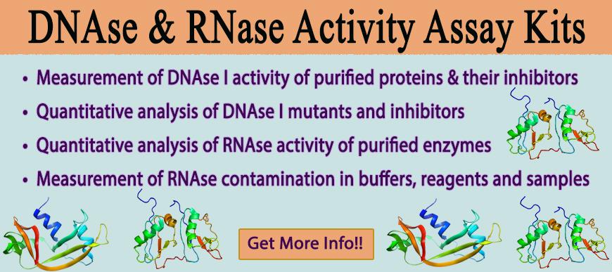 2.DNAse-RNAse kit