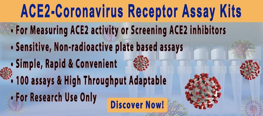 Coronavirus Receptor Activity Assay Kit