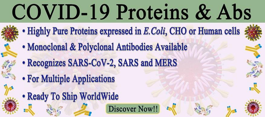 CoronaVirus-Abs-Prot