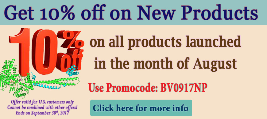 10% OFF August New Products