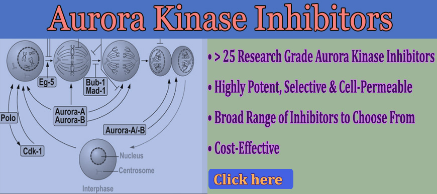 Aurora Inhibitors