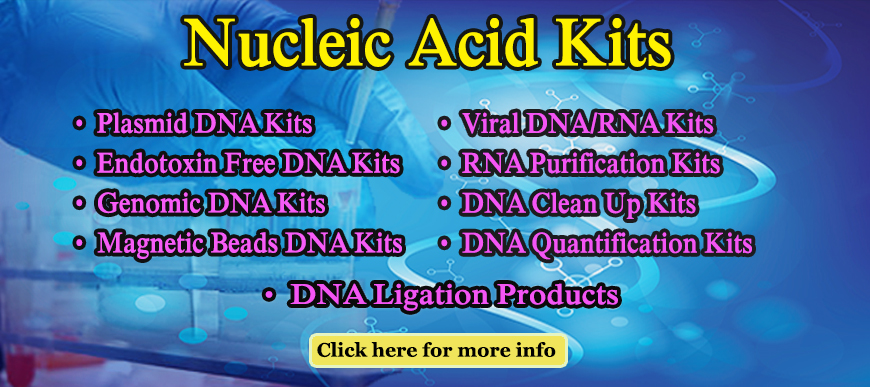 Nucleic Acids Kits Edit 5 Web banner