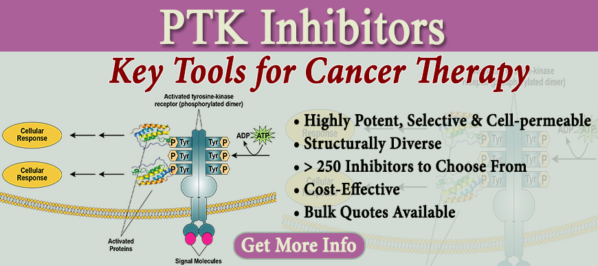 PTK Inhibitors