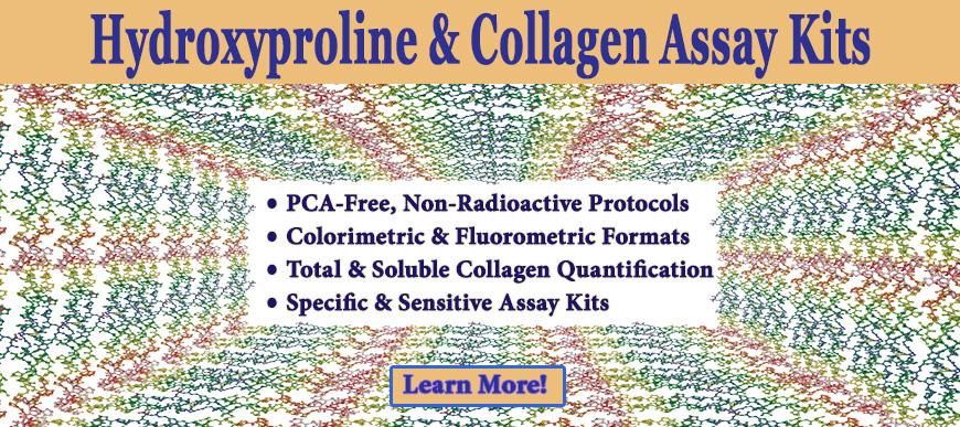 hydroxyproline-collagen