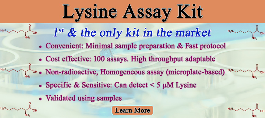 Lysine Assay Kit