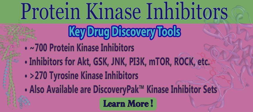 Protein Kinase Inhibitors