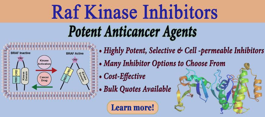 Raf Kinase Inhibitors