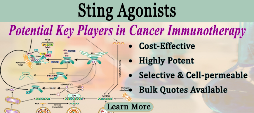 Sting Agonists