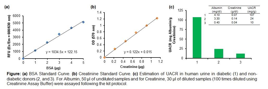 Albumin-to-Creatinine Ratio (ACR) Assay Kit