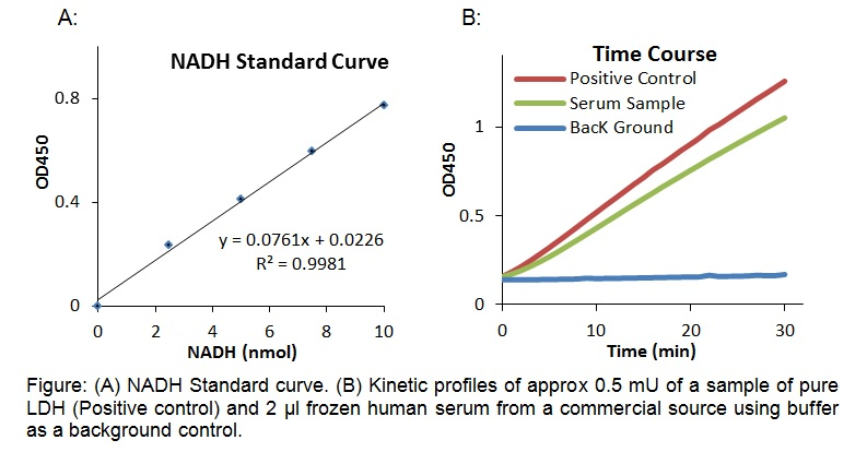 Lactate Dehydrogenase Activity Colorimetric Assay Kit