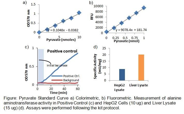 Alanine Aminotransferase (ALT or SGPT) Activity Colorimetric/Fluorometric Assay Kit