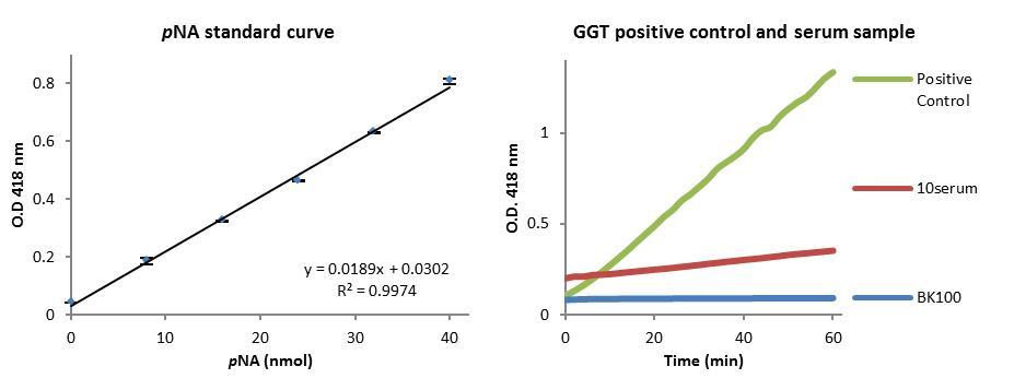 Gamma Glutamyl Transferase (GGT) Activity Colorimetric Assay Kit