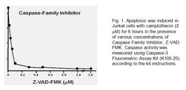 Caspase-Family Inhibitor Z-VAD-FMK