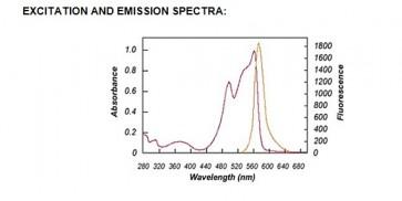 R-Phycoerythrin (R-PE), Red Algae