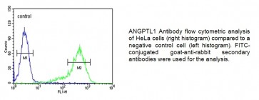 ANGPTL1 Antibody (NT)