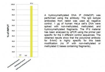 5-hmC polyclonal antibody (rabbit)