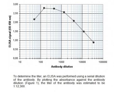 KDM1B polyclonal antibody