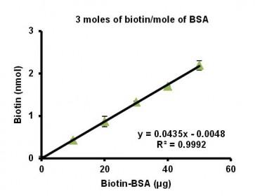 Biotinylated Bovine Serum Albumin (Biotin-LC-BSA) (3 biotin/BSA)