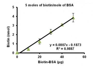 Biotinylated Bovine Serum Albumin (Biotin-LC-BSA) (5 biotin/BSA)