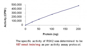 RSK2, Active