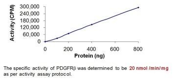 PDGFR beta, Active