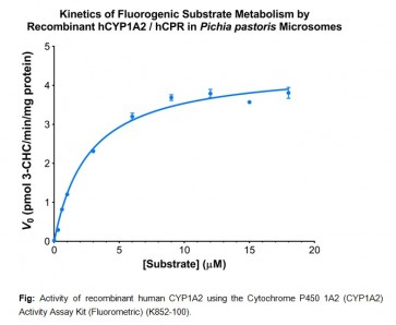 EZCyp™ Active Human Cytochrome P450 1A2