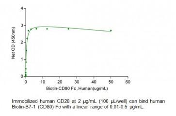Human CellExp™ CD28, Human recombinant