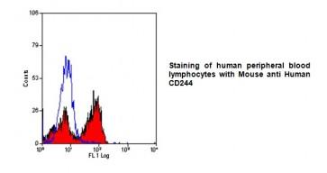 Anti-CD244 Antibody (2B4.69)