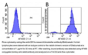 Anti-CD11a (Efalizumab), Human IgG1 Antibody