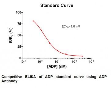 Anti-ADP Antibody (9B2B9)