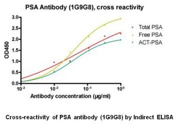 Anti-PSA Antibody (1G9G8)