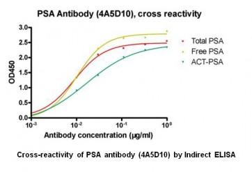 Anti-PSA Antibody (4A5D10)