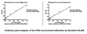 Anti-free PSA Antibody (1D3E6)
