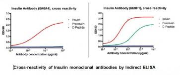 Anti-Insulin Antibody (6E9F1)