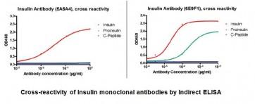 Anti-Insulin Antibody (5A6A4)