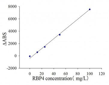 Anti-RBP4 Antibody