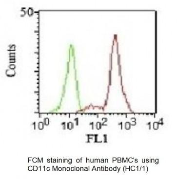 Anti-CD11c Antibody (HC1/1)