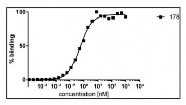 Anti-HDAC6 Monoclonal Antibody (ZnF domain-specific)