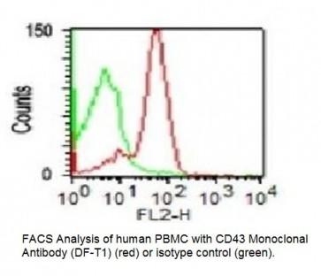 Anti-CD43 Antibody (DF-T1)