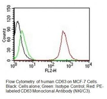 Anti-CD63 Antibody (Clone NKI/C3)