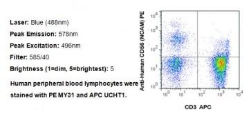 Anti-Human CD56 PE Antibody (MY31)