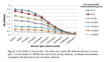 Anti-Mouse IgG1, Rabbit Monoclonal Antibody
