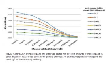Anti-Mouse IgG2a, Rabbit Monoclonal Antibody