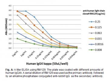 Anti-Human Ig Light Chains, Rabbit Monoclonal Antibody