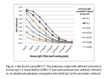 Anti-Human IgG1, Rabbit Monoclonal Antibody