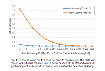 Anti-Human IgG3, Rabbit Monoclonal Antibody
